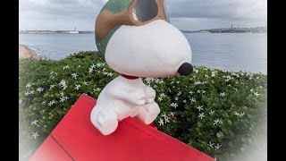 Flying Snoopy Dog House