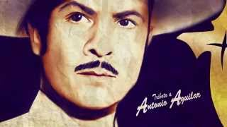 Albur de Amor - Banda Cruz de Oro Tributo a Antonio Aguilar