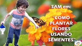 Aprenda a Plantar Girassol com Samuel 4 anos
