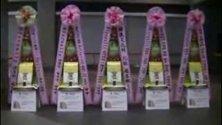 조용필 일본 콘서트 '헬로 투어 인 도쿄 원나잇 스페셜' 조용필 응원 드리미 쌀화환 Dreame for Cho Yong Pil in Tokyo