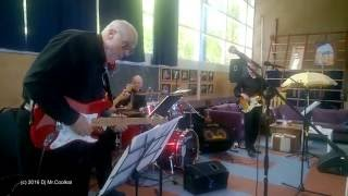 The Revivals - Theme for young lovers Live