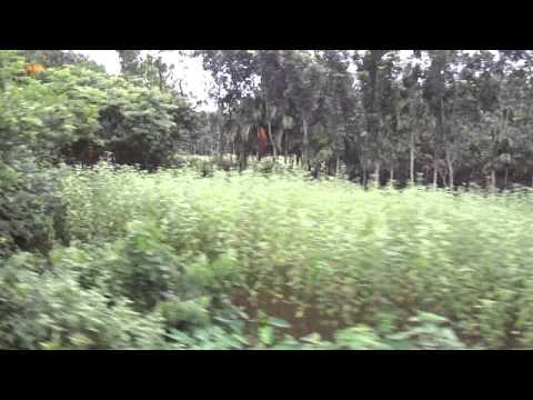 Bangladesh Railway Train Ride To See the Rehabilitation on Kalukhali Jn.MP4