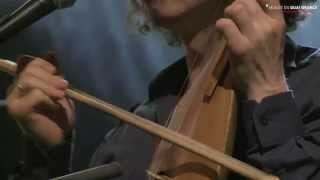 Violons Barbares - Gipsy Wedding