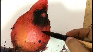 Paint a quick red cardinal in watercolors
