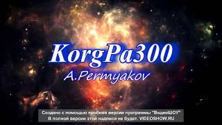 Бутырка-Кольщик KORG PA300