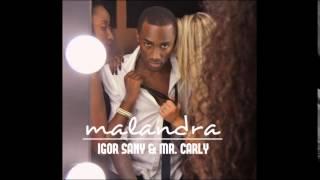 Igor Sany & Mr  Carly - Malandra (2015)