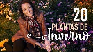 INVERNO: jardim no FRIO + 20 PLANTAS TOP