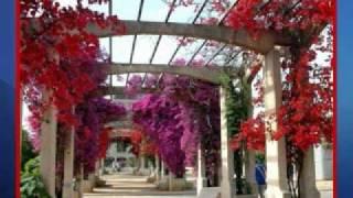 Nana Mouskouri - A place in my hart -