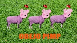 PEPPA PIMP GANG