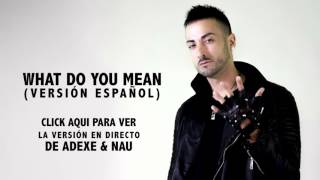 What Do You Mean? - Ivan Troyano (spanish version) Audio