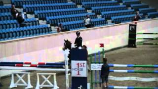 European championships arabian sport horses - ML Kazakhstan