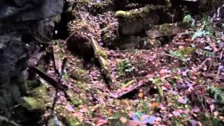 Tunnelinmäki hylätty luola Tikkakoski syksyllä 2015