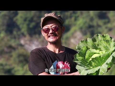 西寶農場的綠保之路 0546中文版 - YouTube