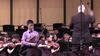 Sibelius Violin concerto, Allegro Moderato