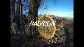 HALYCON (Music Video)