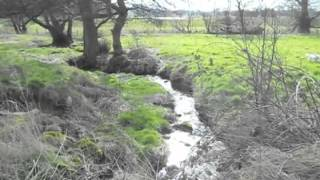 The relaxing sounds of nature - A Spring Stream