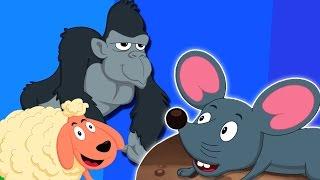 animais Som Canção | miúdos video | Canções para crianças | das crianças rima | Animal Sound Song