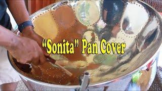 Multisymptom - Sonita (Steelpan Cover)