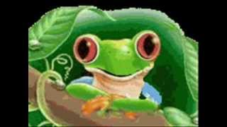 Głupia żaba - zabawa w miłość