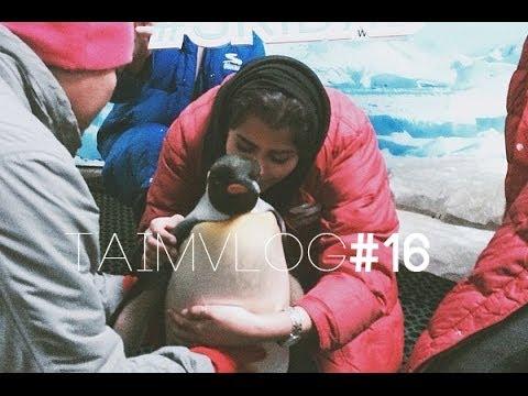 TAIM VLOG #16 |  I Kissed a Penguin و حضنته
