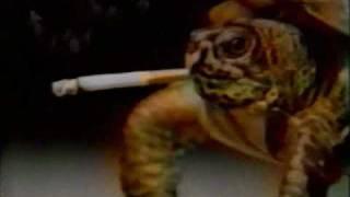 animal smoking