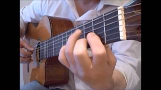 She Loves You - free TAB Beatles fingerstyle guitar solo