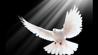 Canto para invocar al Espíritu Santo - Veni Sancte Spiritus traducido