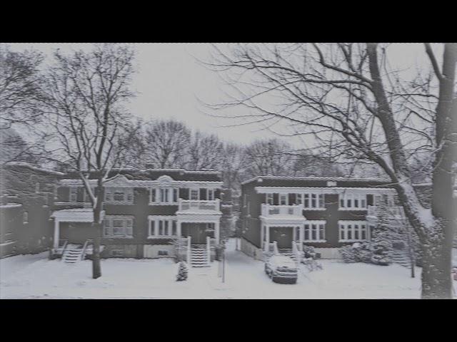 Vídeo de The Levitants
