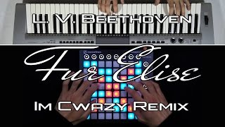 Im Cwazy - Für Elise (Dubstep Remix) // Launchpad MK2 + Yamaha Keyboard Cover