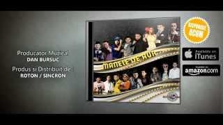 Nicolae Guta & Danut Ardeleanu - As sta cu tine 10 vieti (Official Track)
