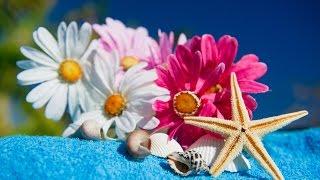 Spa Music, Massage Music, Relax, Meditation Music, Instrumental Music to Relax, ☯469