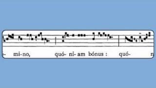 Alleluia: Confitemini Domino (Easter Vigil)
