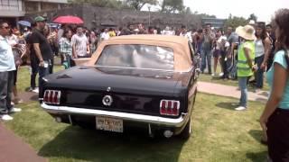 Exhibición autos clásicos C.U.