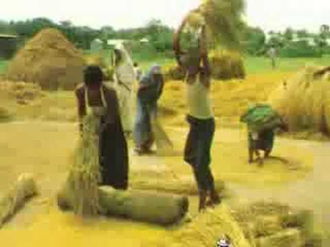 Natural Bangladesh