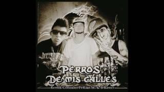 Remik Gonzalez ft Liar SC & B-Raster 2017 / Perros de mis Calles