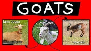 Goats Explained