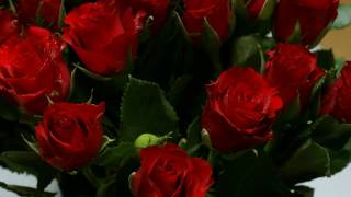 Wayne Newton - Red Roses For A Blue Lady
