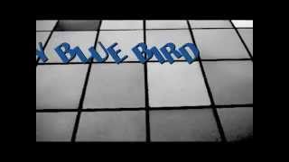 OUI NEED SONGS - LITTLE BLUE BIRD