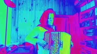 AVICII - WAKE ME UP  (cover) (accordion )