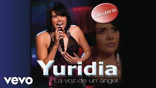 Yuridia - Déjame Volver Contigo