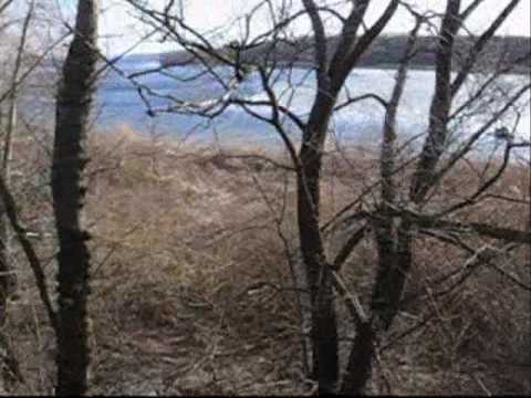 21.03.2010 Ukraine,Zaporozhye reg.,Vidradne.After hard winter.2.wmv