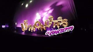 LEMONGRASS EN CONCIERTO... ¡Muy pronto en tu ciudad!