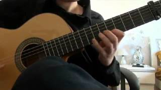 Gipsy Kings - Lagrimas (Cover by Alex Maisuradze)