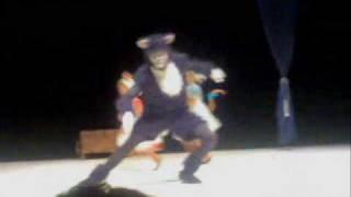Sonho de Cinderela - O Gato Lúcifer