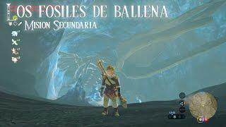 Los fósiles de ballena - Zelda Breath of the Wild - Misión Secundaria