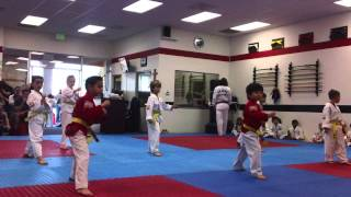 Dragon Martial Arts: Little Dragon Testing