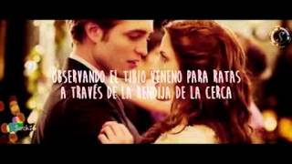 Copia de Flightless Bird, subtitulado al español