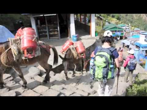 Nepal-Annapurna Sanctuary Trek (10-24 Nov 2012)
