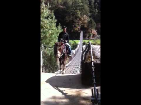 Guy on horse riding over extended bridge in Nepal
