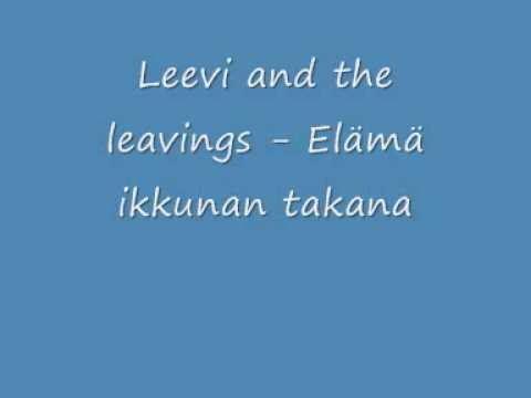 leevi-and-the-leavings-elama-ikkunan-takana-pohjoiskarjala2008